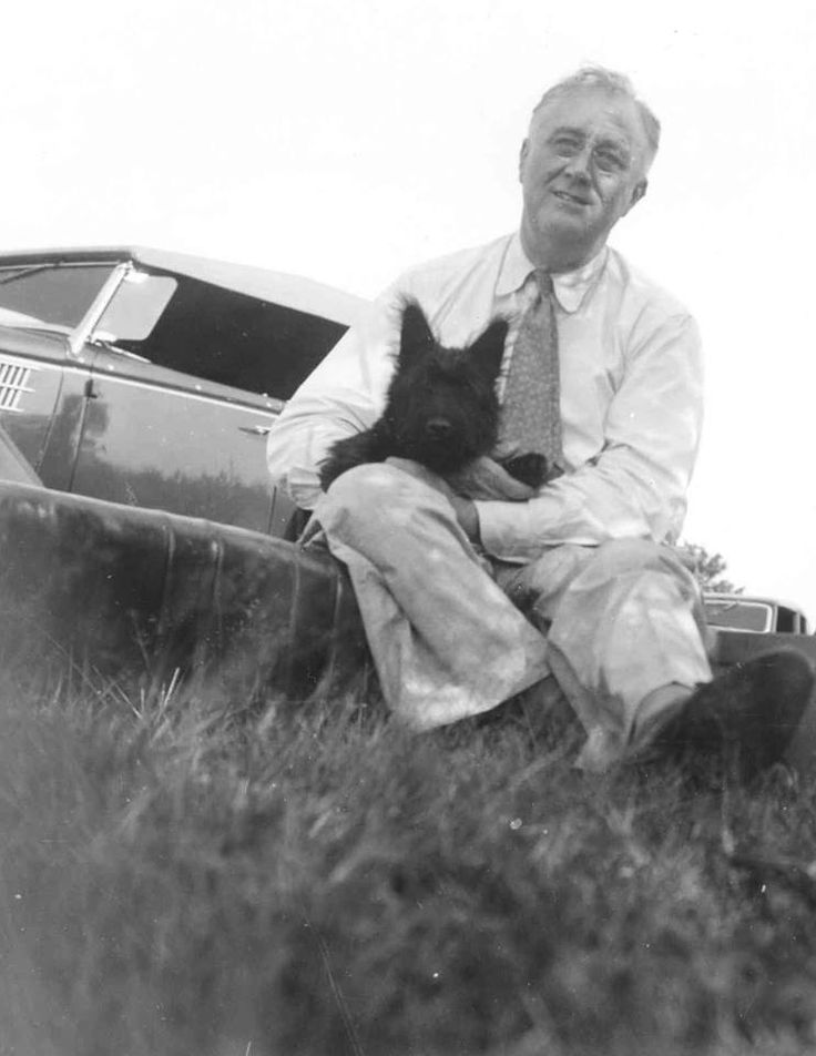 tổng thống Mỹ franklin d roosevelt and fala