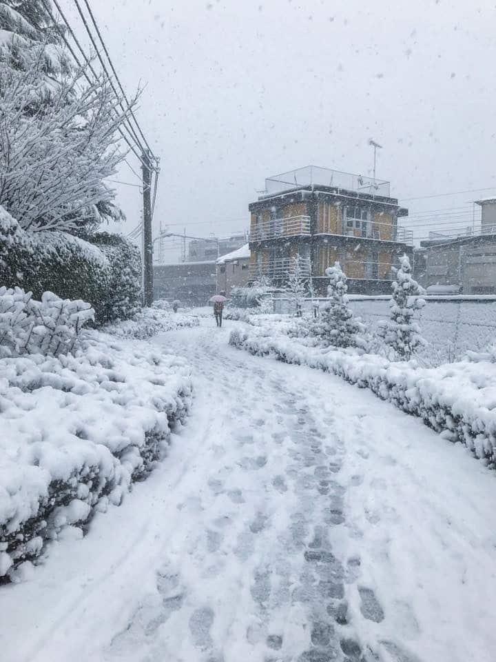 Tokyo, Nhật Bản đang trải qua một mùa đông khắc nghiệt nhất