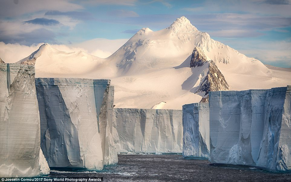 The iceberg graveyard: These icebergs were captured in Antarctica and rise up about 100 feet from sea level. They were formed after an ice shelf collapsed a few years ago due to global warming.