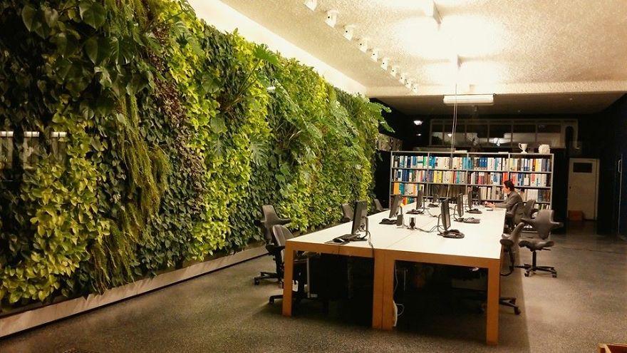 Reading Room In Rotterdam