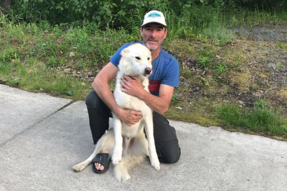 Nanook, an Alaskan husky, is an adventurous dog who lives with Scott Swift at the end of Crow Creek Road. (Photo provided by Scott Swift)