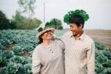 """Bộ ảnh """"ba mẹ trong vườn bắp cải"""" của chàng trai Sóc Trăng thu hút"""
