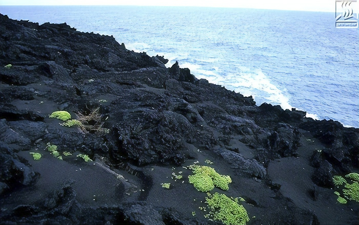 forbidden-places-on-earth-surtsey-island-iceland-15