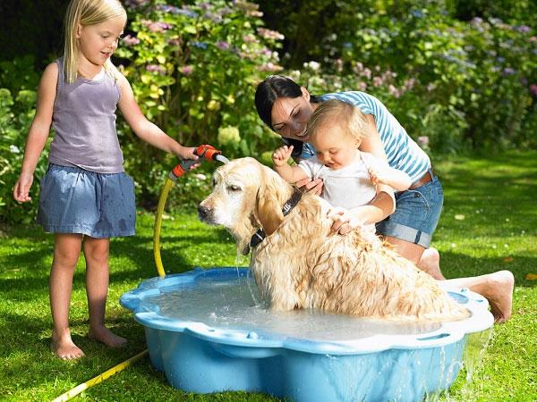 Kết quả hình ảnh cho trẻ chơi với thú cưng