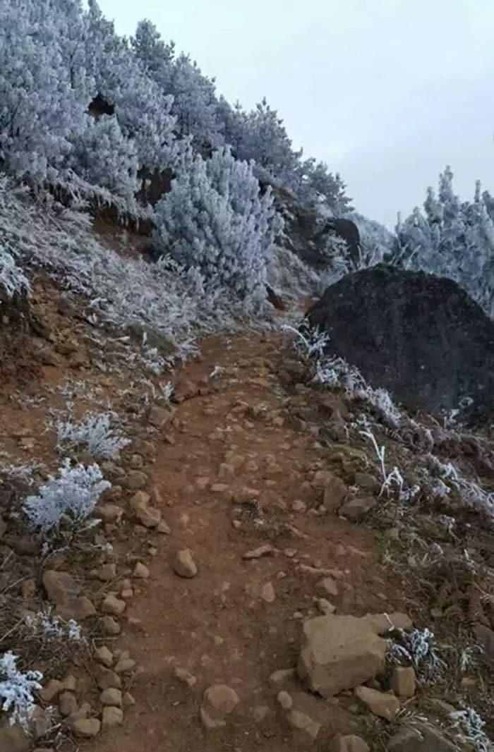 ice-boy-walk-freezing-cold-school-wang-fuman-china-7