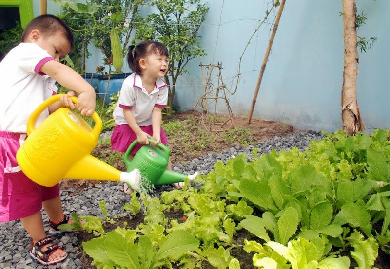 Kết quả hình ảnh cho trẻ em trồng cây