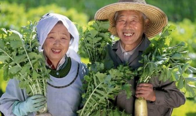 bí quyết ăn uống để sống thọ của người Nhật