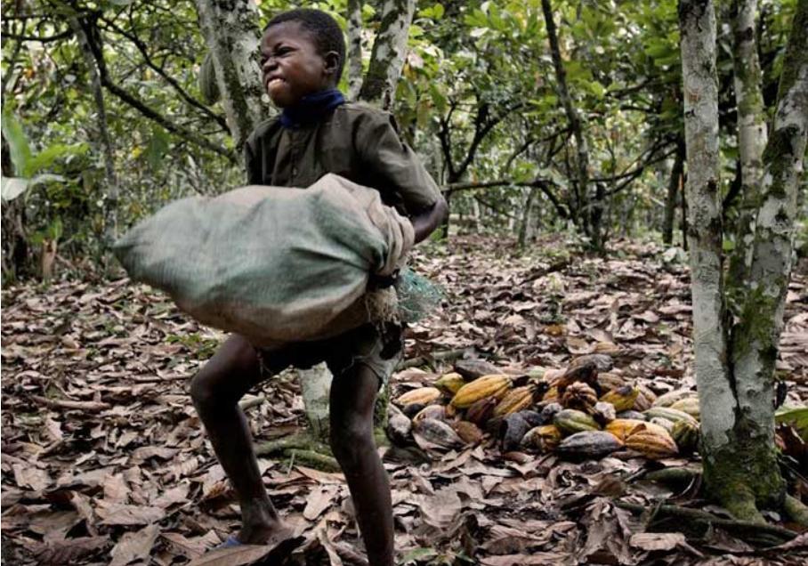 lao động nô lệ