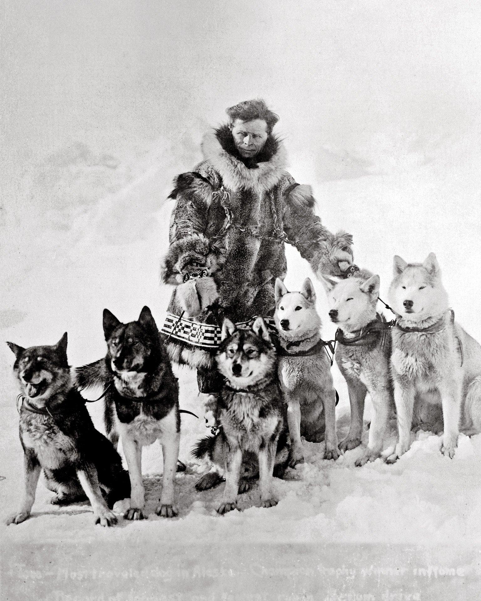 Câu chuyện khó tin về những chú chó dũng cảm đã cứu sống cả một thị trấn - Ảnh 3.