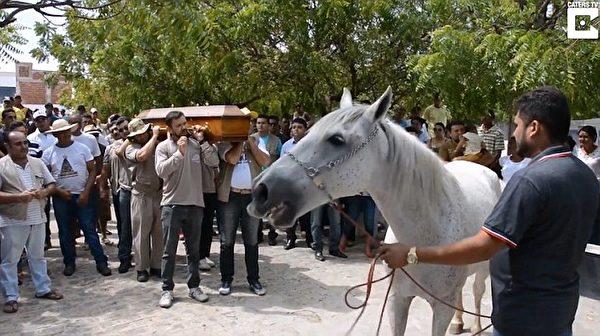 chú ngựa trung thành