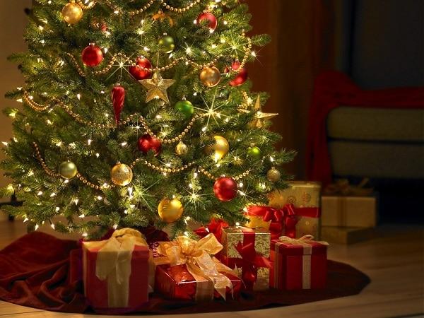 cây thông Giáng Sinh, cây thông noel