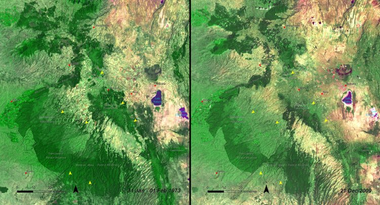 More deforestation is visible in Kenya