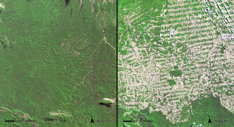 This area of Rondonia, Brazil was heavily deforested between 1975 (left) and 2009 (right).