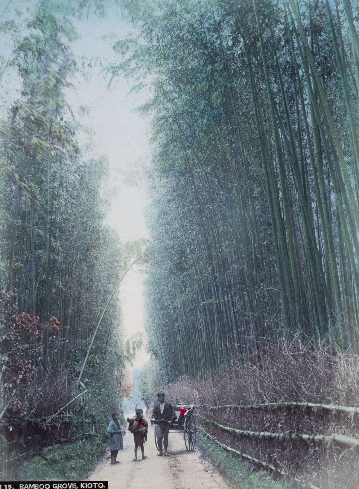 京都的人力车与竹林。(New York Public Library)