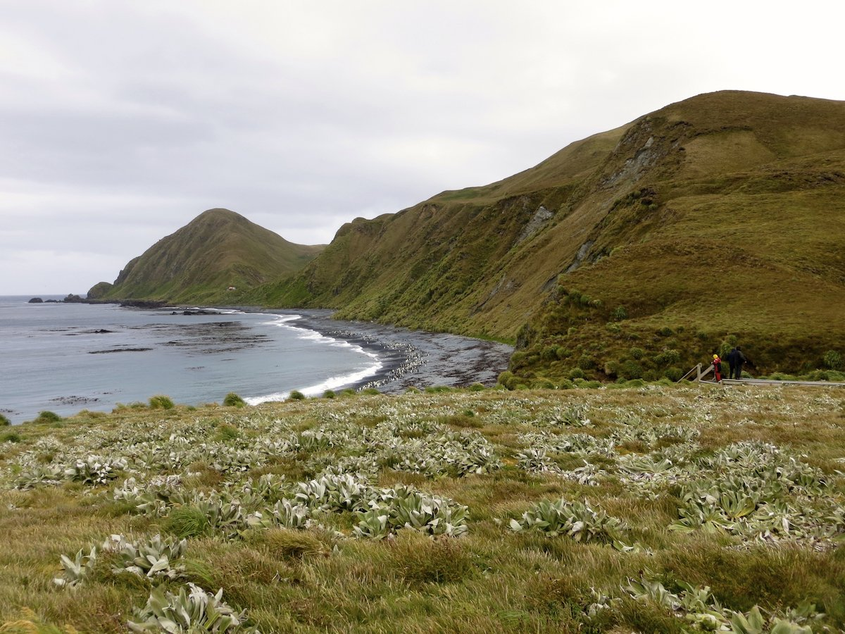 9. Macuarie Island is located 664 miles from the nearest mainland in New Zealand and is most famous for its wildlife. There are no more than 40 people living on the island at any time, but there are around 850,000 penguins.
