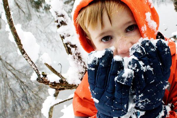 Kết quả hình ảnh cho ăn tuyết