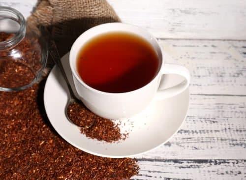 hồng trà nam phi