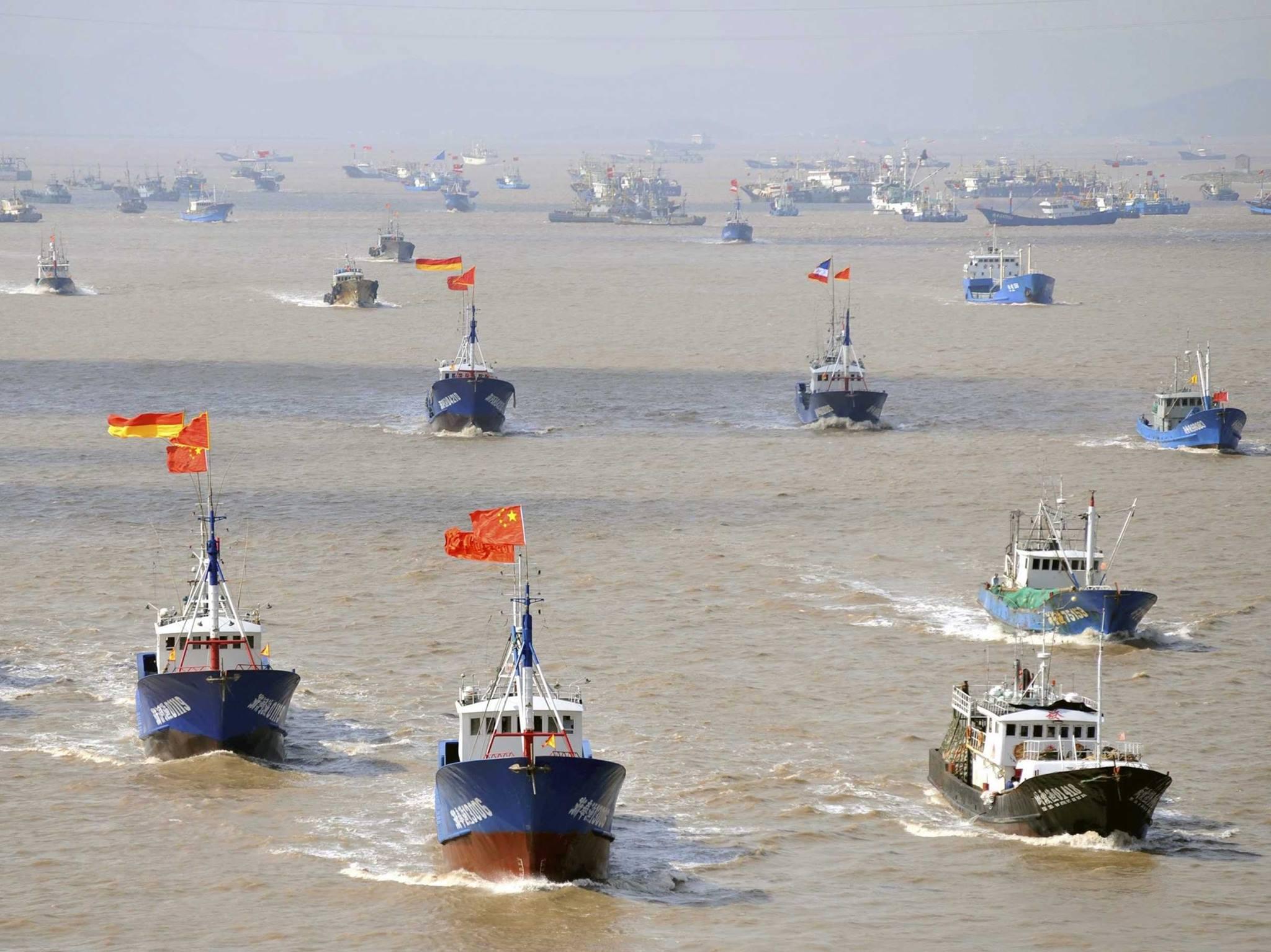 Đội tàu cá Trung Quốc ở biển Đông (Ảnh: Facebook)