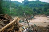 Tại xã Phìn Ngan (huyện Bát Xát, Lào Cai), nhiều hộ dân bị cô lập do lũ lớn, nhiều công trình, cây trồng bị gãy đổ trong cơn bão số 2. (Ảnh: baolaocai.vn)