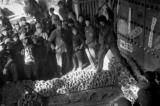 Cảnh mộ của gia quyến Khổng Tử bị đào trong thời Cách mạng Văn hóa