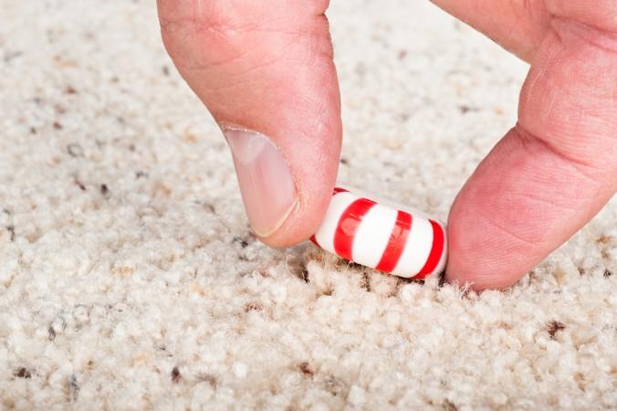 (ảnh: Shutterstock) Thức ăn rơi xuống đất