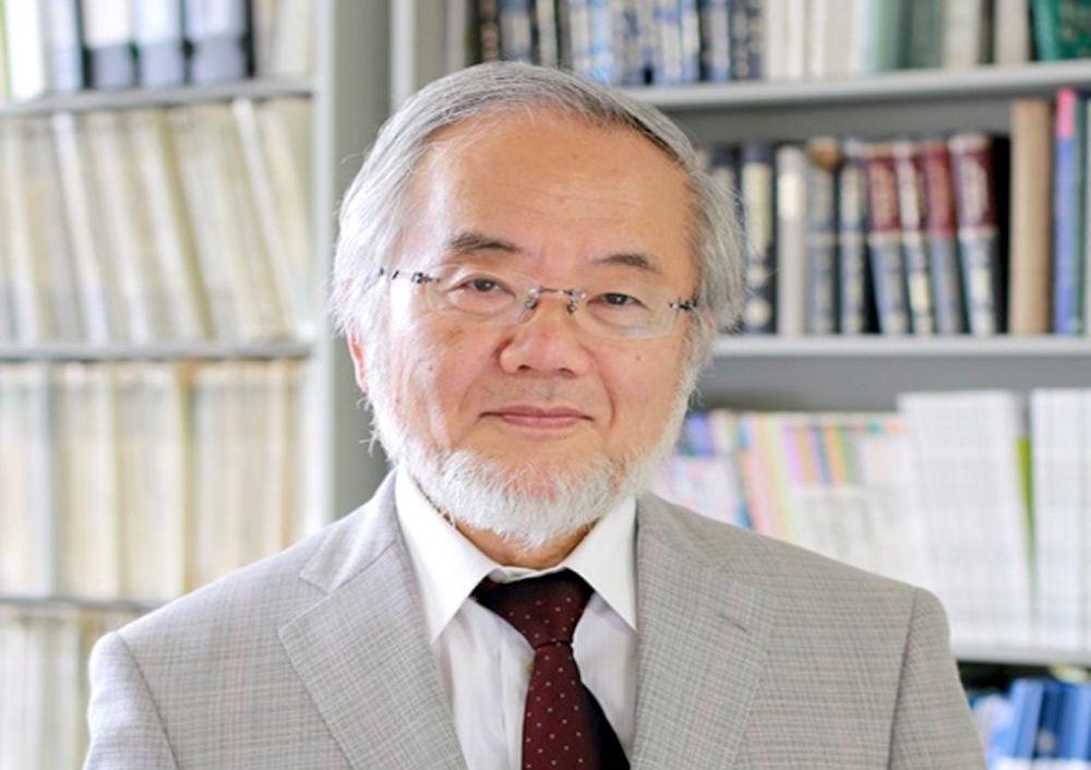 Ông Yoshinori Ohsumi (Ảnh: Tokyo Institute of Technology)