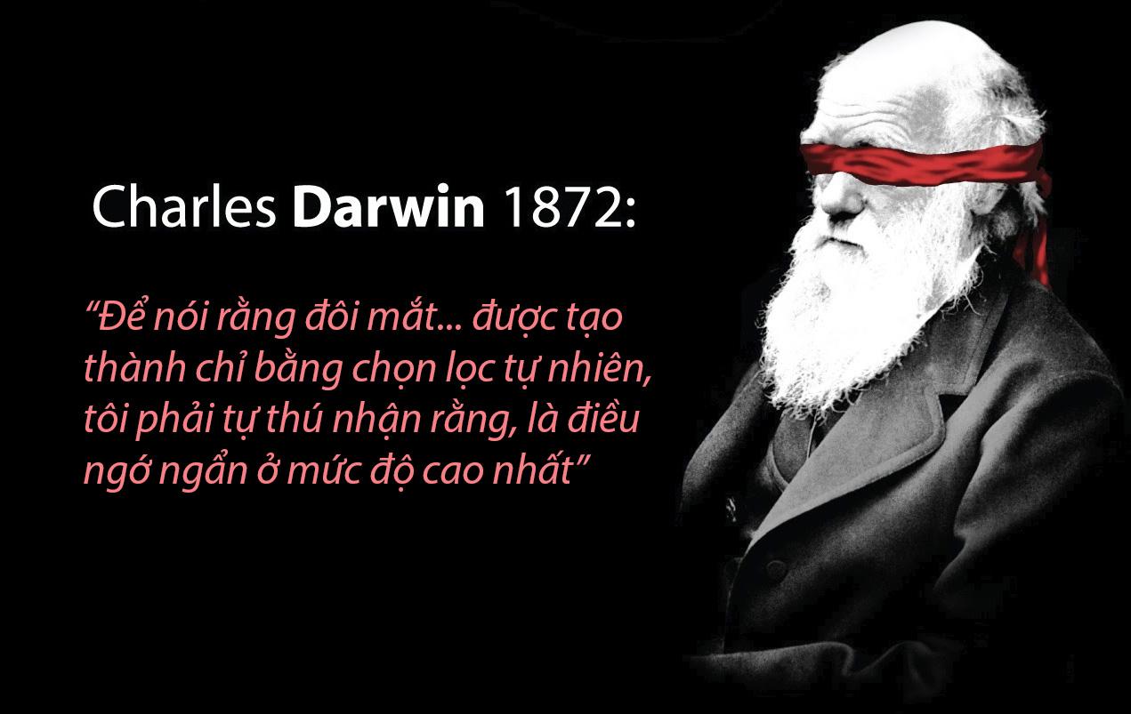 darwin-copy