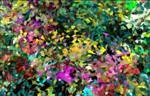 Quá trình chuyển biến hình thái của 5 protein huỳnh quang và tế bào mô liên kết