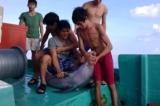 Cá heo bị một nhóm ngư dân sát hại ở vùng biển Phú Quốc
