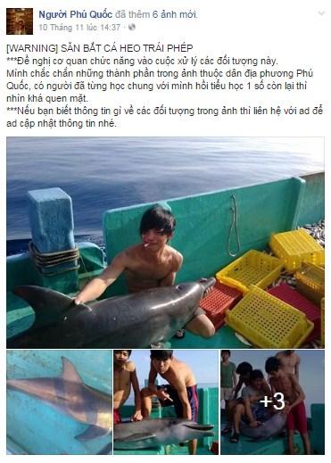 Cảnh báo săn bắt cá heo trái phép kèm hình ảnh trên mạng xã hội FB. (Ảnh chụp màn hình/FB Người Phú Quốc)
