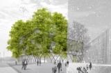 Trồng cây thành nhà cao tầng với kiến trúc Baubotanik (video)