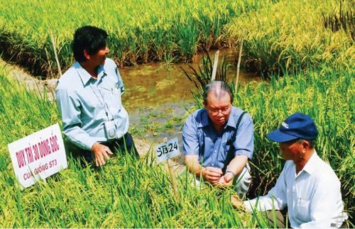 """Nhà nông học Võ Tòng Xuân cùng kỹ sư """"vua lai tạo giống"""" Hồ Quang Cua đi học Campuchia làm lúa nước."""