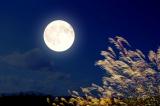Vầng trăng trong đêm tối cuộc đời