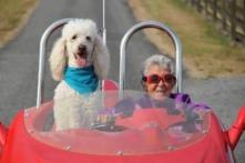 Bà lão 90 tuổi chọn đi du lịch thay vì điều trị ung thư