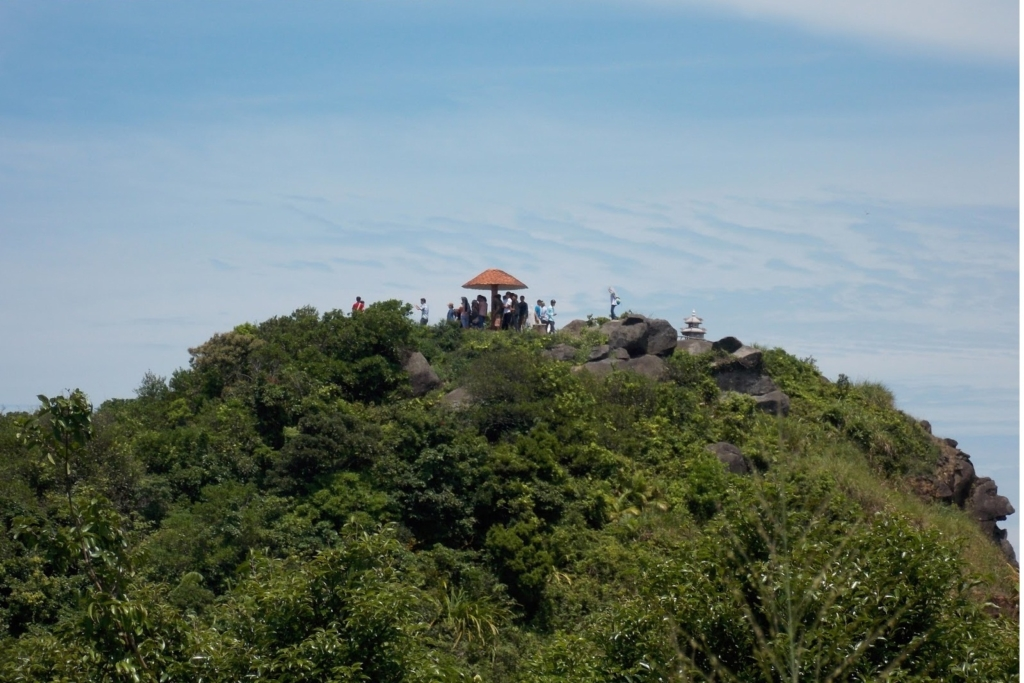 Ngoài ra, thuộc dự án Công viên Đại Dương Sơn Trà, Sun Group sẽ làm tuyến cáp nối thẳng lên đỉnh Đá Bàn. Điều này được cho là sẽ tác động không nhỏ đối với môi trường tự nhiên, phòng cháy chữa cháy, thảm thực vật và bảo tồn động vật nơi đây, vốn là nơi cư ngụ của Vọoc Chà Vá Chân Nâu, một loài nằm trong Sách Đỏ Thế giới. (Ảnh: wikidanang.com)