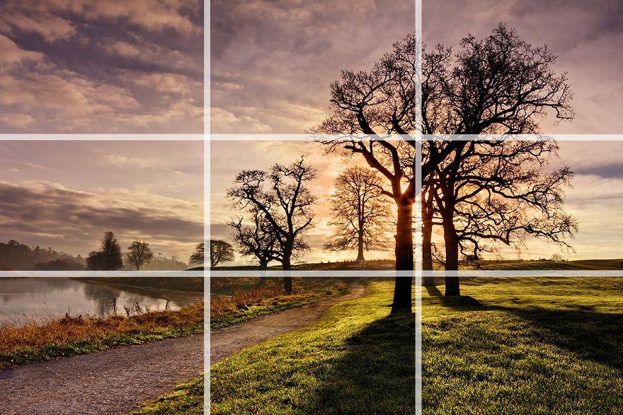 19 kỹ thuật bố cục ảnh từ nhiếp ảnh gia chuyên nghiệp