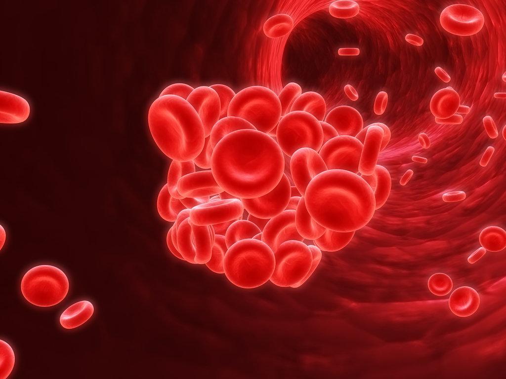 Thiếu máu bắt nguồn từ nhiều nguyên nhân khác nhau nhưng phổ biến nhất là vì thiếu sắt (Ảnh: Internet)