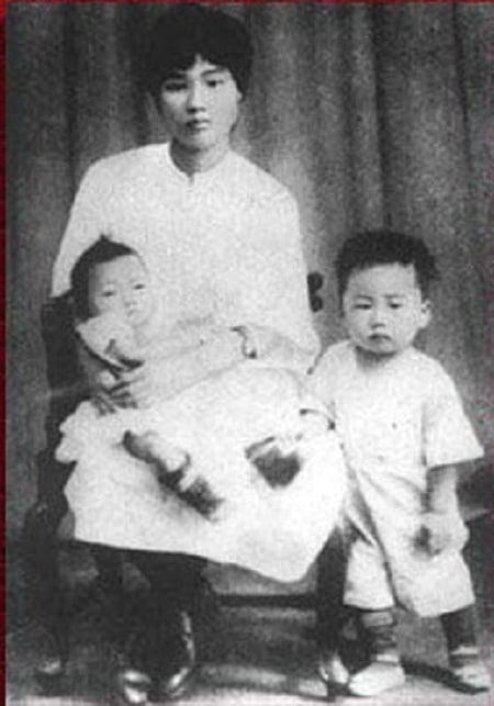 Dương Khai Huệ, Mao Ngạn Anh và Mao Ngạn Thanh