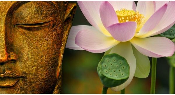 """Hàm nghĩa thực sự của chữ """"Phật"""" là gì?"""
