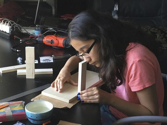 Anushka đang miệt mài nghiên cứu (Ảnh do Ravi Kaiknaware cung cấp)