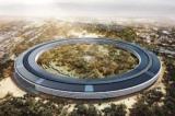 Trụ sở 'phi thuyền' trị giá 5 tỷ USD của Apple bị phủ trong bùn (video)