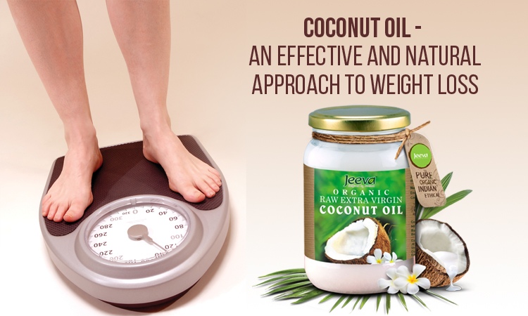 coconut oil helps to lose weight