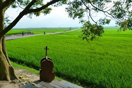 Một năm cho lúa nghe nhạc cổ điển, sản lượng lúa Trì Thượng ở Đài Loan phá kỉ lục