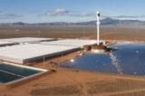 Úc: Trang trại khổng lồ trồng rau trên sa mạc chỉ với nước biển và ánh mặt trời