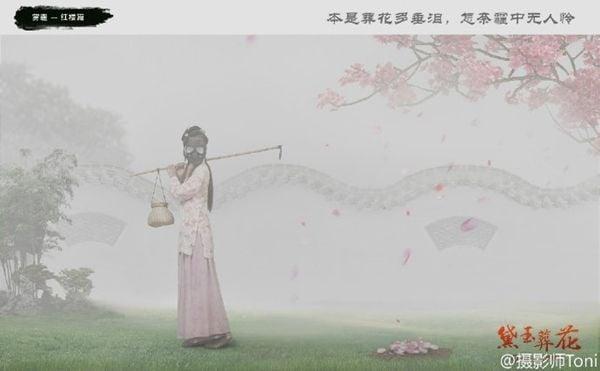 Đại Ngọc mai táng cho hoa (Ảnh: Weibo Toni).
