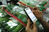 TPHCM: Truy xuất nguồn gốc rau sạch bằng Smartphone