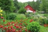 Thử sức viết luận văn – Nhận ngay một trang trại