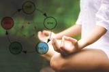 Đông y: Làm sao để trị bệnh 'thất tình'?