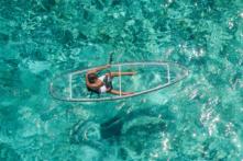 Vừa bơi vừa ngắm đáy đại dương với chiếc thuyền trong suốt (Video)