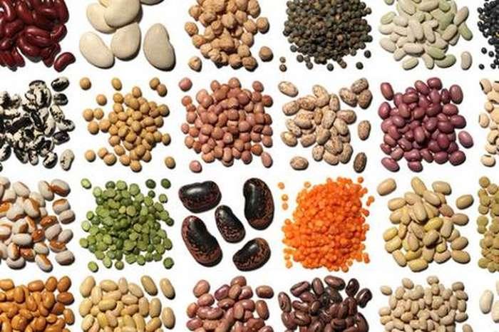 Mỗi loại đậu là một loại thuốc (Ảnh: Internet)